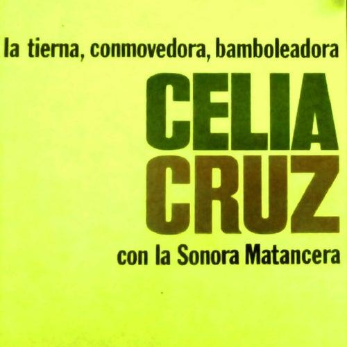 La Tierna Conmovedora Bamboleardora by La Sonora Matancera