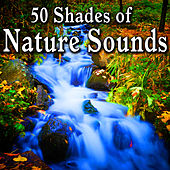 50 Shades of Nature Sounds by Nature Sound Series