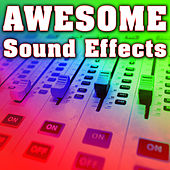 Awesome Sounds by Sound Effects Library