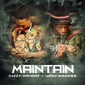 Maintain (feat. Joey Bada$$) - Single by Dizzy Wright