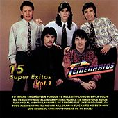 15 Super Exitos, Vol. 1 by Los Temerarios