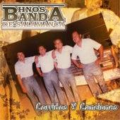 20 Corridos y Canciones by Hnos. Banda de Salamanca