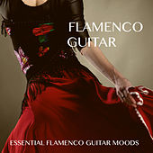 Flamenco Guitar by The Lounge Lizards