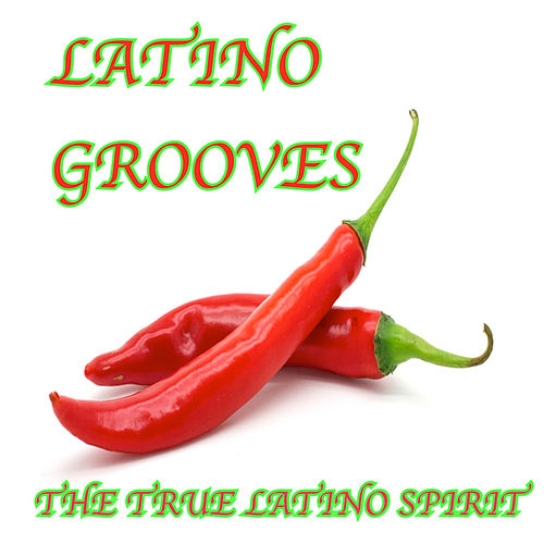 Latino Grooves by The Lounge Lizards