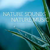 Music and Nature by Nature Sounds Nature Music