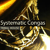 Systematic Congas by Various Artists