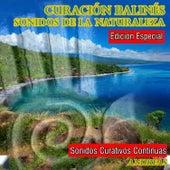 Curación Balinés Sonidos de la Naturaleza by Andreas