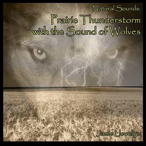 Natural Sounds: Prairie Thunderstorm with the Sound of Wolves by Jamie Llewellyn