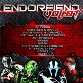 Endorfiend Vol 01 - EP by Various Artists