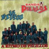 15 Exitos by Banda Pelillos