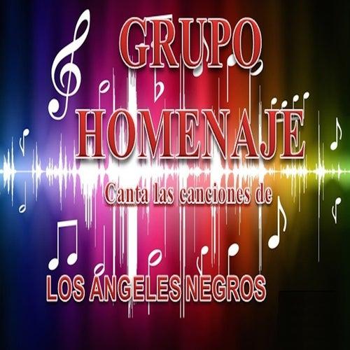 Canta las Canciones de los Angeles Negros by Grupo Homenaje