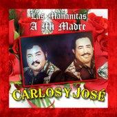 Las Mañanitas a Mi Madre by Carlos Y Jose