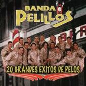 20 Grandes Exitos de Pelos by Banda Pelillos
