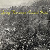 Casual Gods by Jerry Harrison