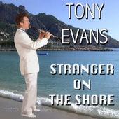Stranger on the Shore by Tony Evans