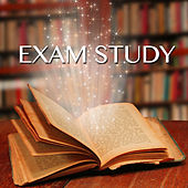 Exam Study - Classical & Piano Concentration Music for Studying, Brain Food to Increase Brain Power & Concentration With White Noise by Exam Study Classical Music Orchestra