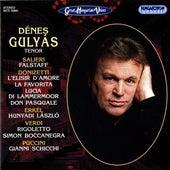 Denes Gulyas by Denes Gulyas