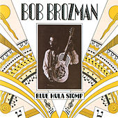 Blue Hula Stomp by Bob Brozman