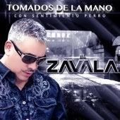 Tomados de la mano - Single by Zavala