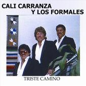 Triste Camino by Cali Carranza