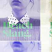 Who Would Ever Want Anything So Broken? by Beach Slang