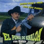 Entre Pase Y Pase by El Puma De Sinaloa