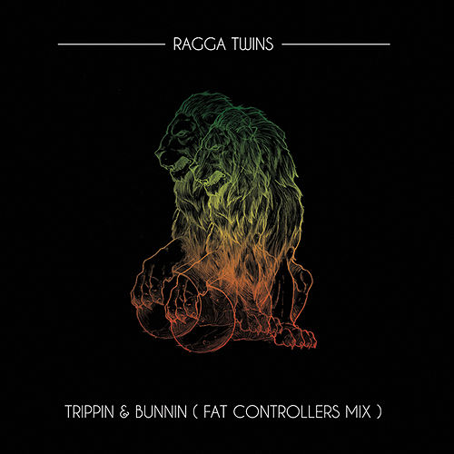 Trippin & Bunnin (Fat Controller Mix) by Ragga Twins