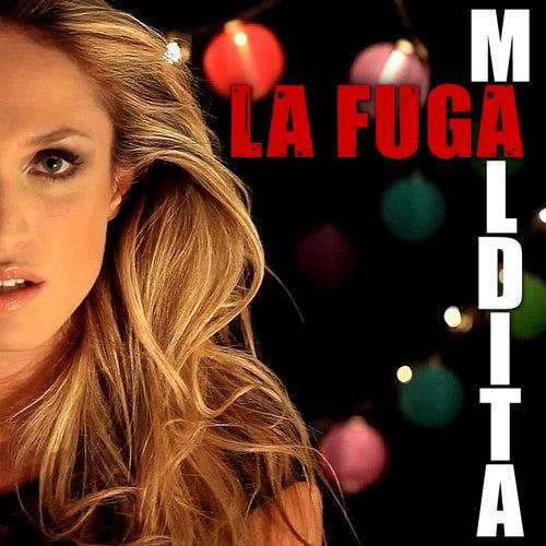 Maldita by La Fuga