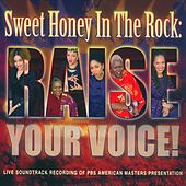 Raise Your Voice by Sweet Honey in the Rock