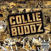 Collie Buddz by Collie Buddz