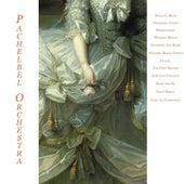Wedding Music - Pachelbel: Canon - Mendelssohn: Wedding March - Schubert: Ave Maria - Wagner: Bridal Chorus - Vivaldi: the Four Seasons & Guitar Concerto - Bach: Air On the G String -  Liszt: La Campanella by Various Artists