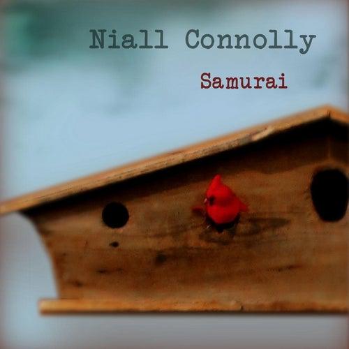 Samurai by Niall Connolly