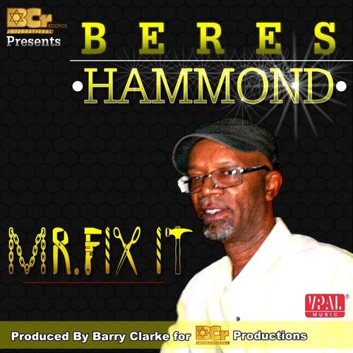 Mr. Fix It by Beres Hammond