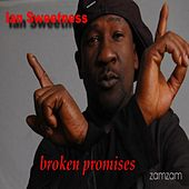 Broken Promises by Ian Sweetness