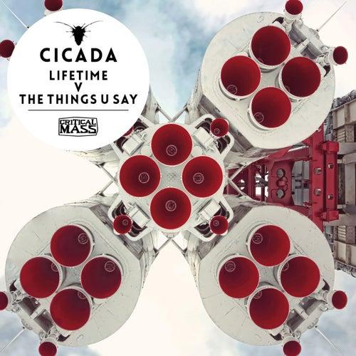 Lifetime V The Things U Say by Cicada