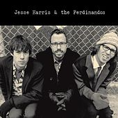 Jesse Harris & the Ferdinandos by Jesse Harris