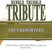 A Tribute To - The Carpenters by Dubble Trubble