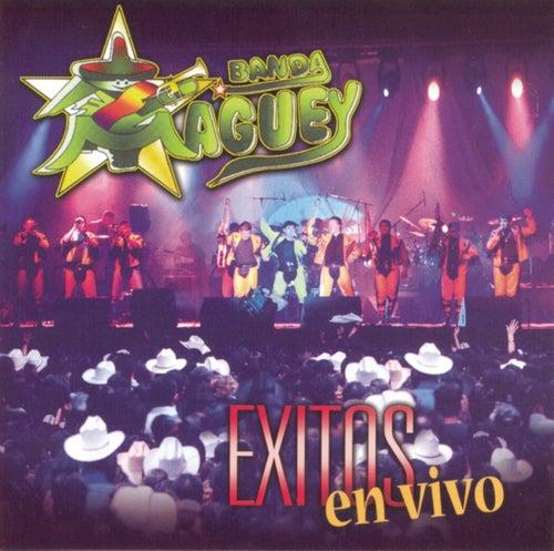 Exitos En Vivo by Banda Maguey