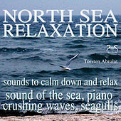 North Sea Relaxation - Sound of the Sea, Piano, Crushing Waves, Seagulls, Sounds to Calm Down and Re by Torsten Abrolat