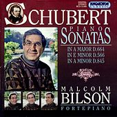 Schubert: Piano Sonatas, Vol. 4: Nos. 6, 13 and 16 by Malcolm Bilson