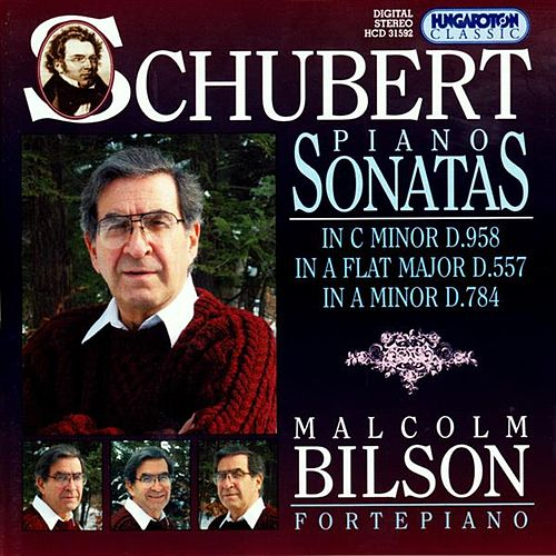 Schubert: Piano Sonatas, Vol. 7:  Nos. 5, 14 and 19 by Malcolm Bilson