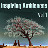 Inspiring Ambiences, Vol. 1 by Spirit