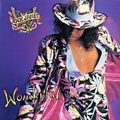 Wonderful by Rick James
