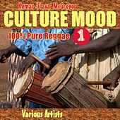 Culture Mood by Various Artists