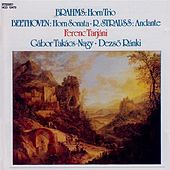 Brahms: Horn Trio, Op. 40 / Beethoven: Horn Sonata, Op. 17 / Strauss, R.: Andante by Ferenc Tarjani