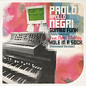 Gumbo Funk by Paolo 'Apollo' Negri
