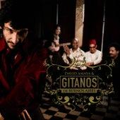 Gitanos De Buenos Aires by David Amaya
