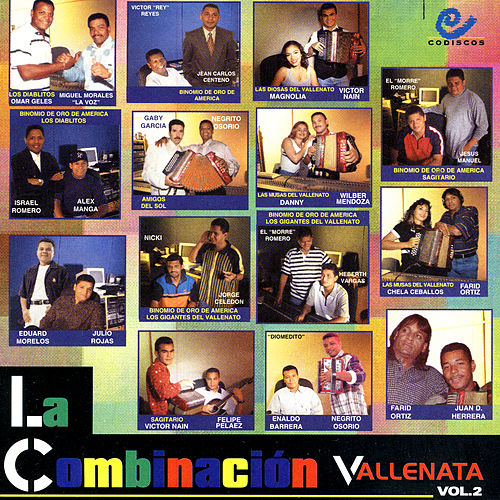 La Combinacion Vallenata, Vol. 2 by Various Artists