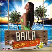 Baila Verano 2014 - EP by Various Artists