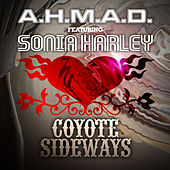 Coyote Sideways by A.H.M.A.D.